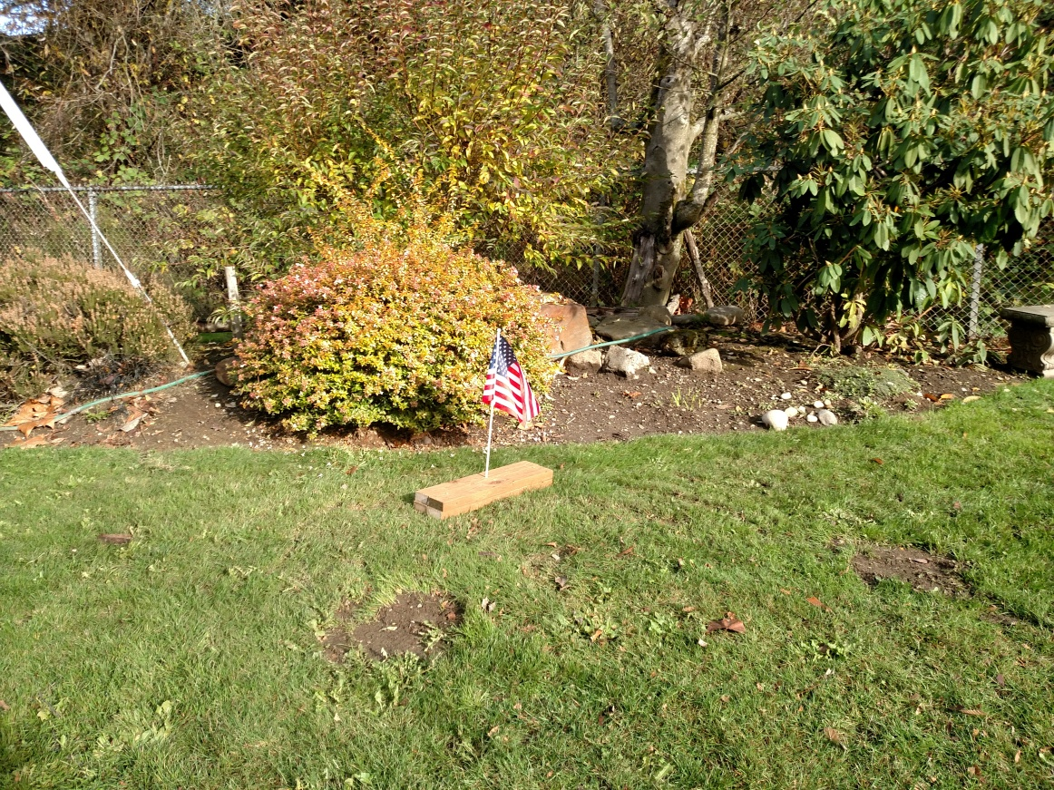 Epiphany Garden with Elliott Walters memorial flag on veterans day Nov 11 2018.jpg