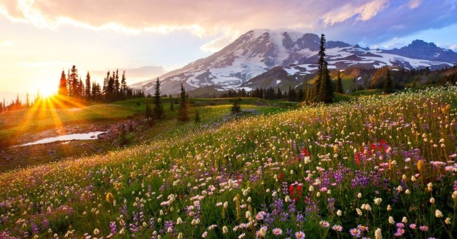 Mount Rainier Earth Day April 22 2020